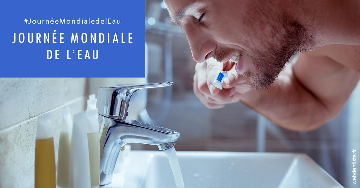 https://dr-brousse-alain.chirurgiens-dentistes.fr/Journée de l'eau 2
